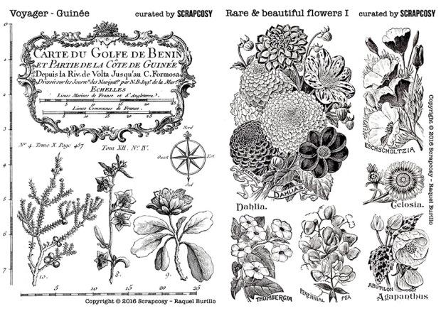 stamps-original